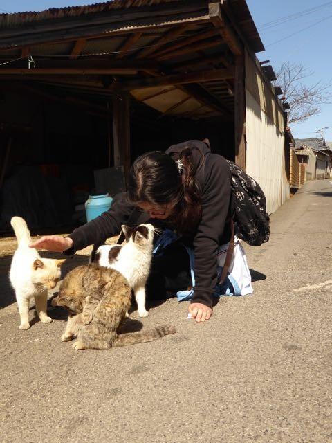 f:id:minami-no-neko:20160321010448j:plain