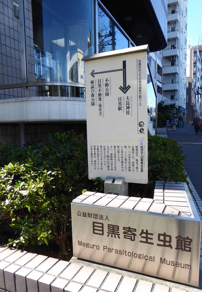 f:id:minami-no-neko:20170121015243j:plain