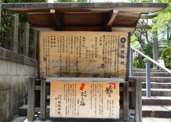 f:id:minami-no-neko:20170703032015j:plain