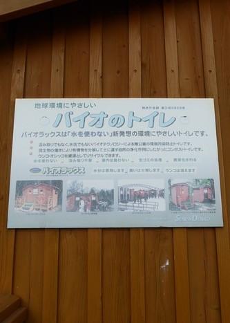 f:id:minami-no-neko:20170713082949j:plain