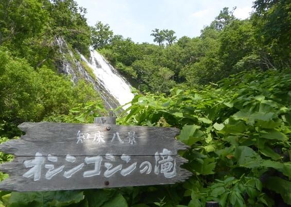 f:id:minami-no-neko:20170725044339j:plain