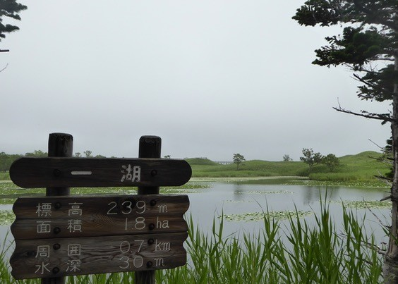 f:id:minami-no-neko:20170801030615j:plain