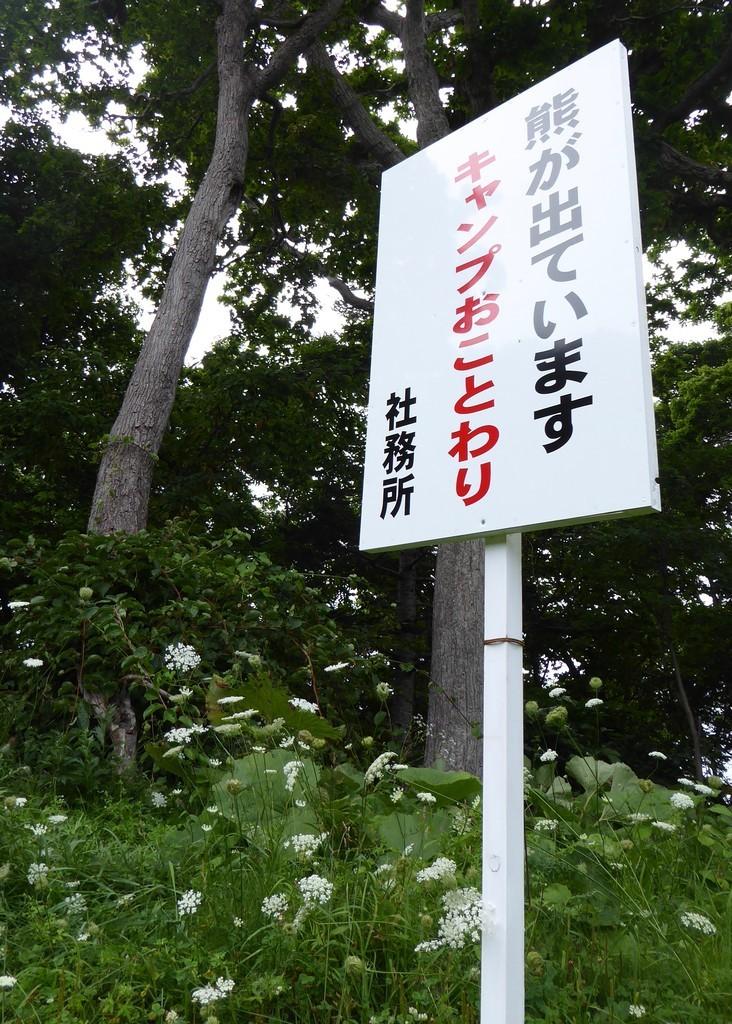f:id:minami-no-neko:20170829061213j:plain