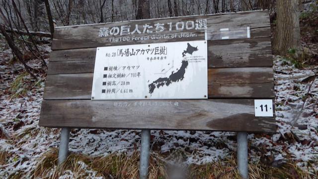f:id:minami-no-neko:20180403152813j:plain