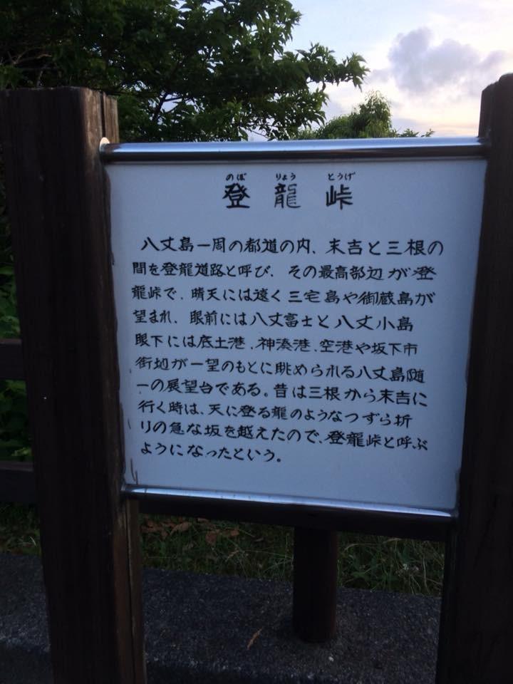 f:id:minami-no-neko:20180615200550j:plain