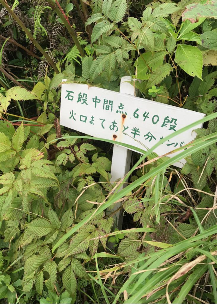 f:id:minami-no-neko:20180821140314j:plain