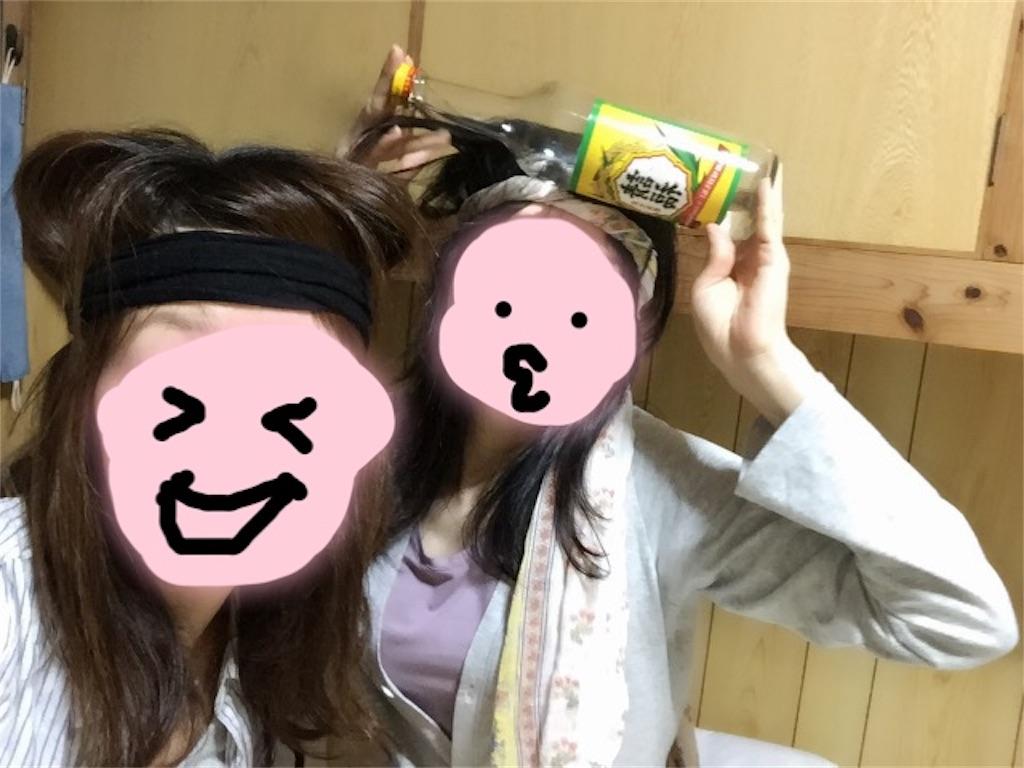 f:id:minami-saya:20190202044218j:image