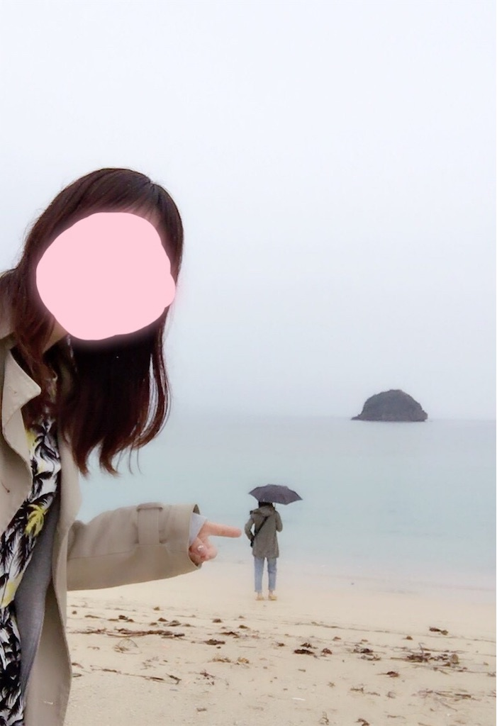 f:id:minami-saya:20190219225108j:plain