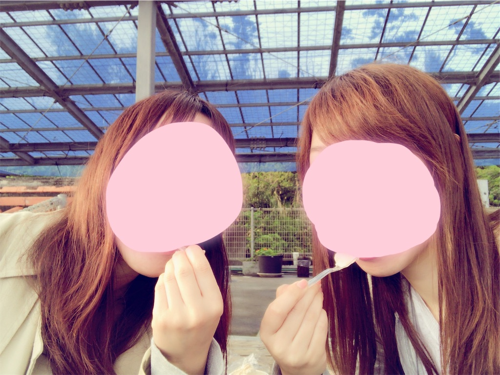 f:id:minami-saya:20190219225243j:image