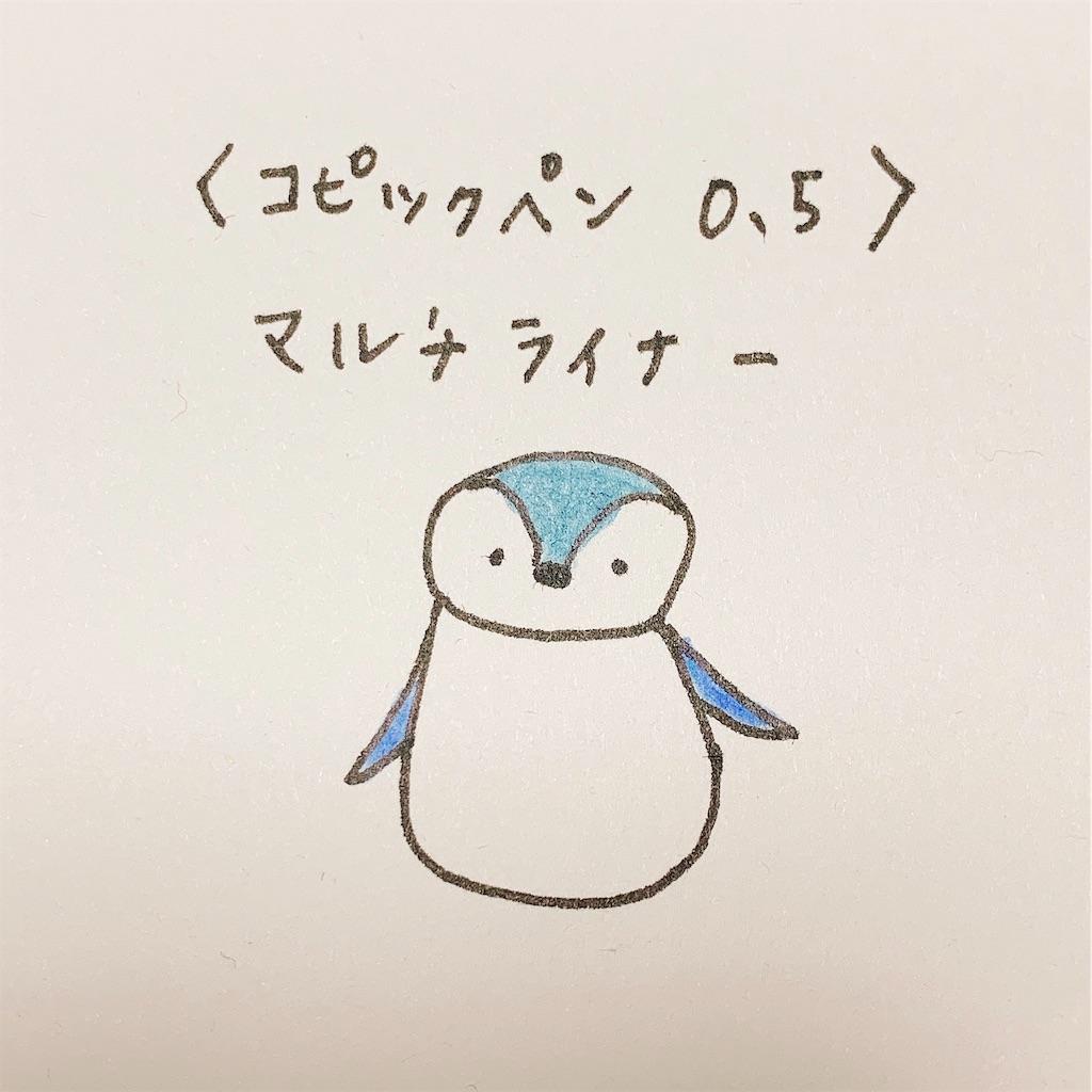 f:id:minami-saya:20190408222947j:image