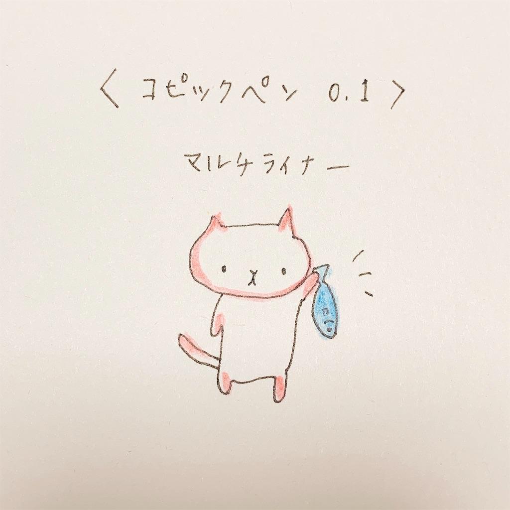 f:id:minami-saya:20190408222953j:image