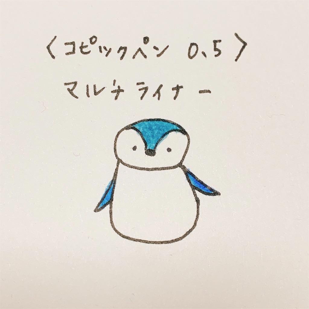 f:id:minami-saya:20190408223100j:image