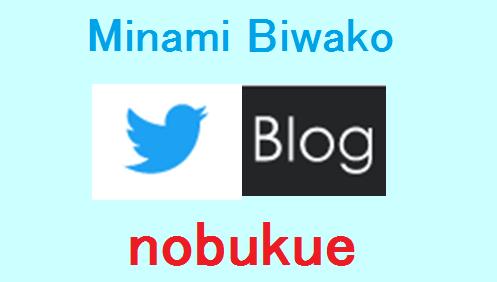 f:id:minamibiwako:20210514162044p:plain