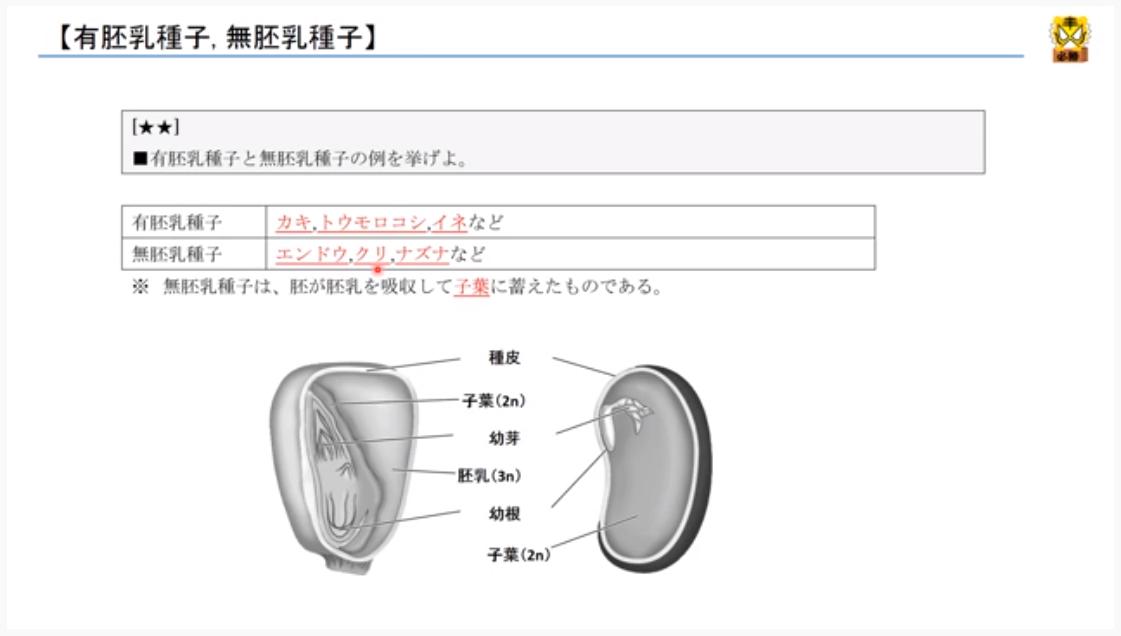 f:id:minamibiwako:20210526174404p:plain