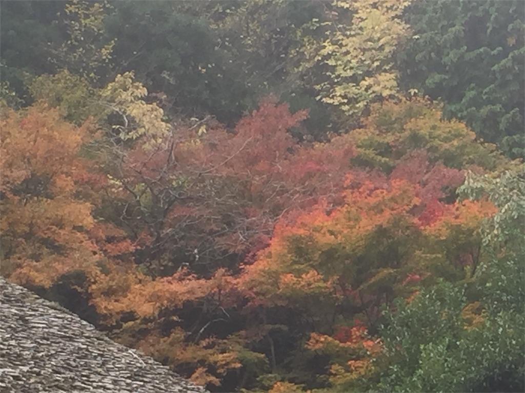 f:id:minamichankawai:20171112112955j:image