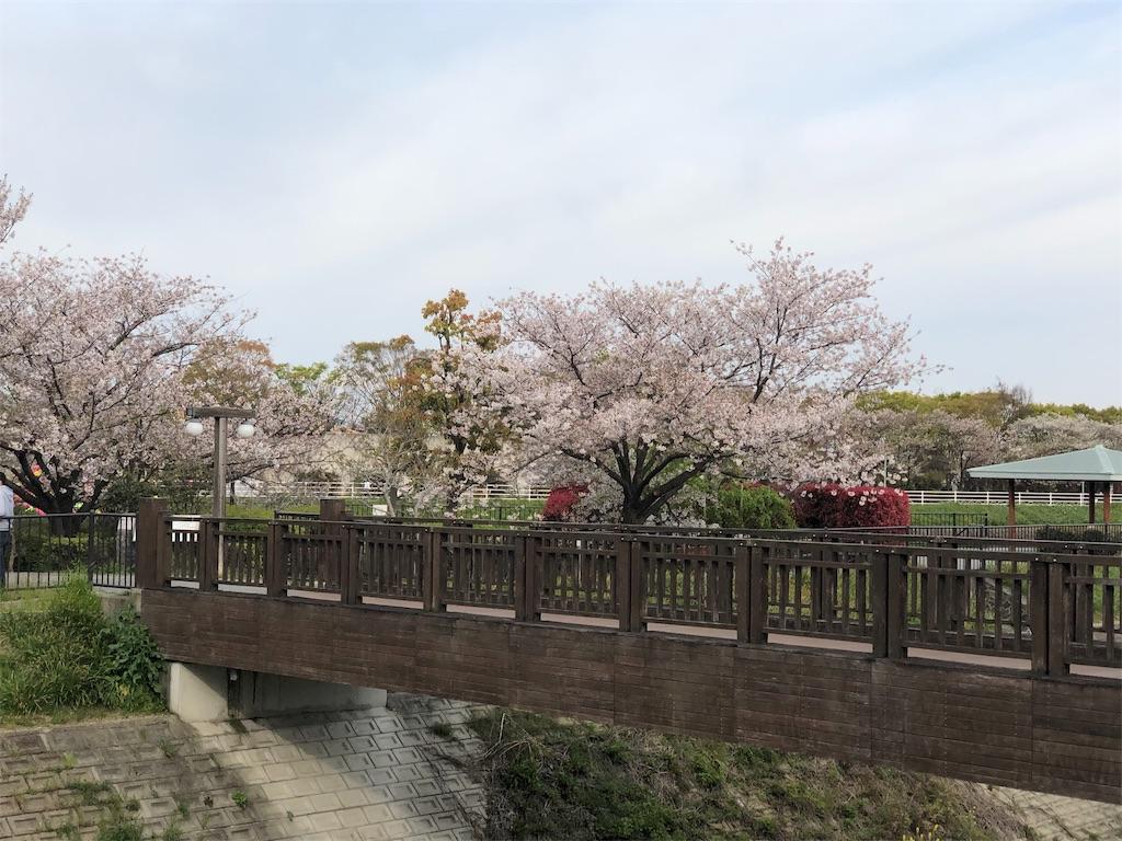 f:id:minamichankawai:20190413233234j:image