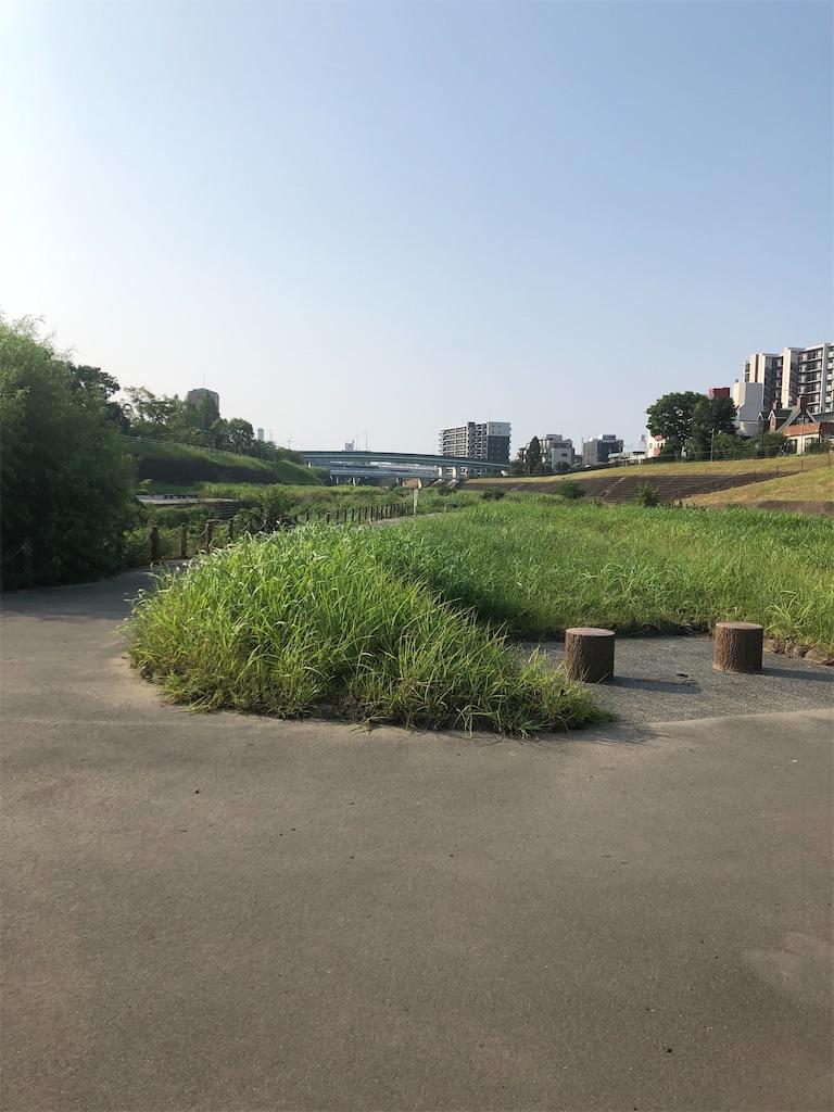 f:id:minamichankawai:20210801094636j:image