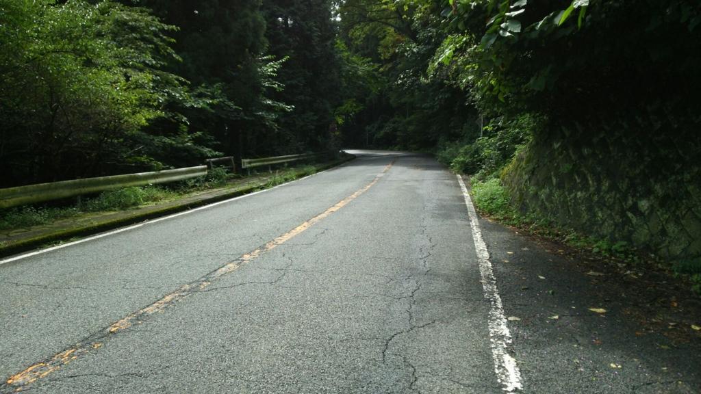f坂とカーブしかない箱根旧道