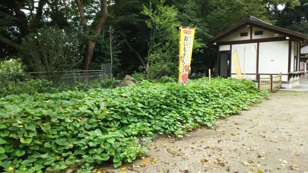 f:id:minamimachida0706:20160916210808j:plain