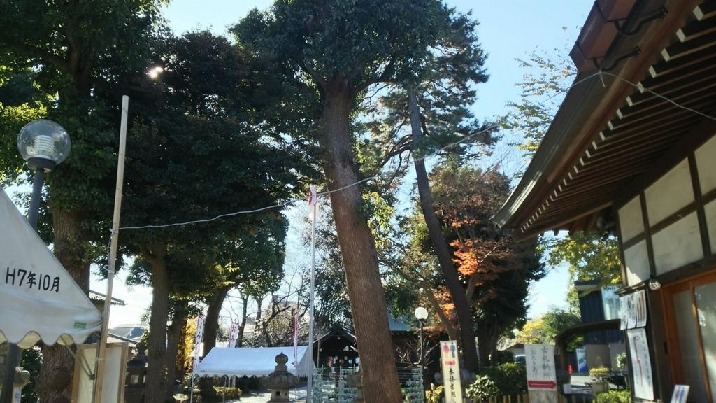 閑静な松陰神社の境内とうっそうと茂る樹木。