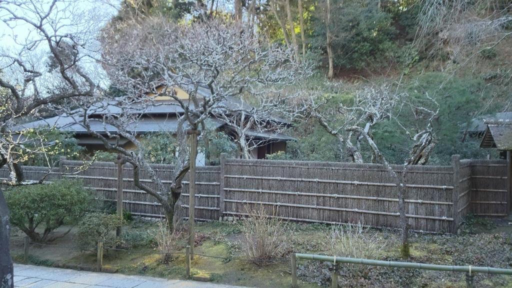 f:id:minamimachida0706:20170126000739j:plain