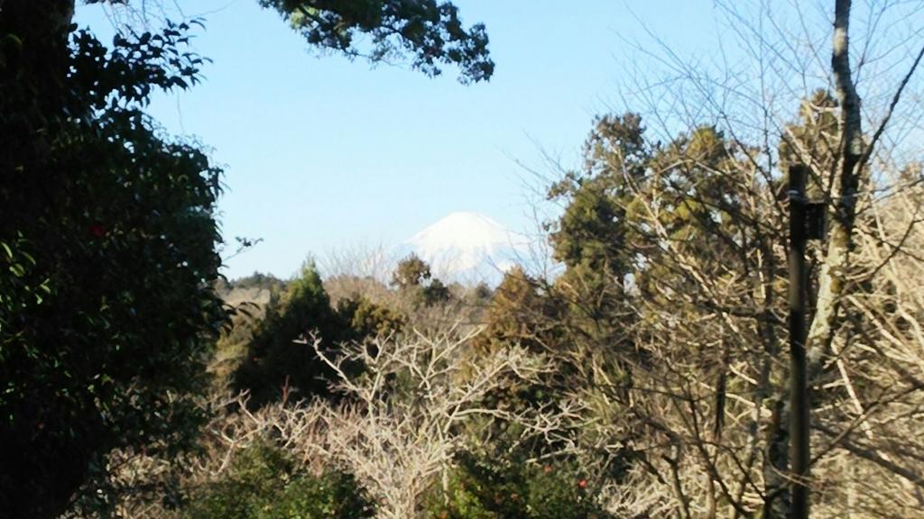 ビューポイントから見た富士山