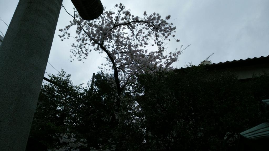 f:id:minamimachida0706:20170409223545j:plain