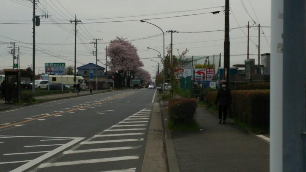 瀬谷駅まで続く海軍道路