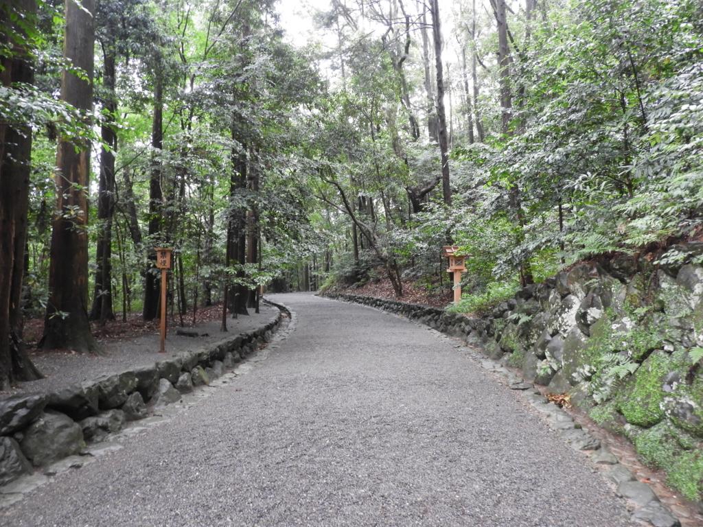 森の中を進む参道
