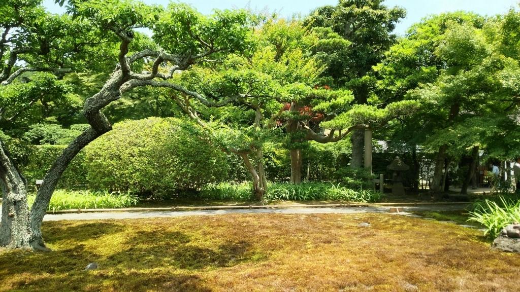 山門方向の庭園