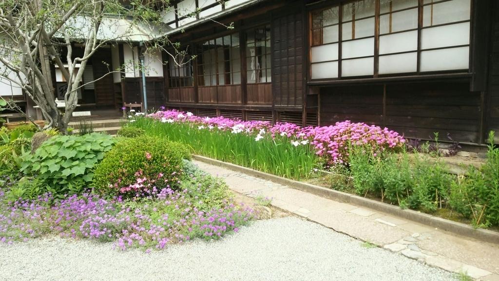 海蔵寺の境内に咲く花