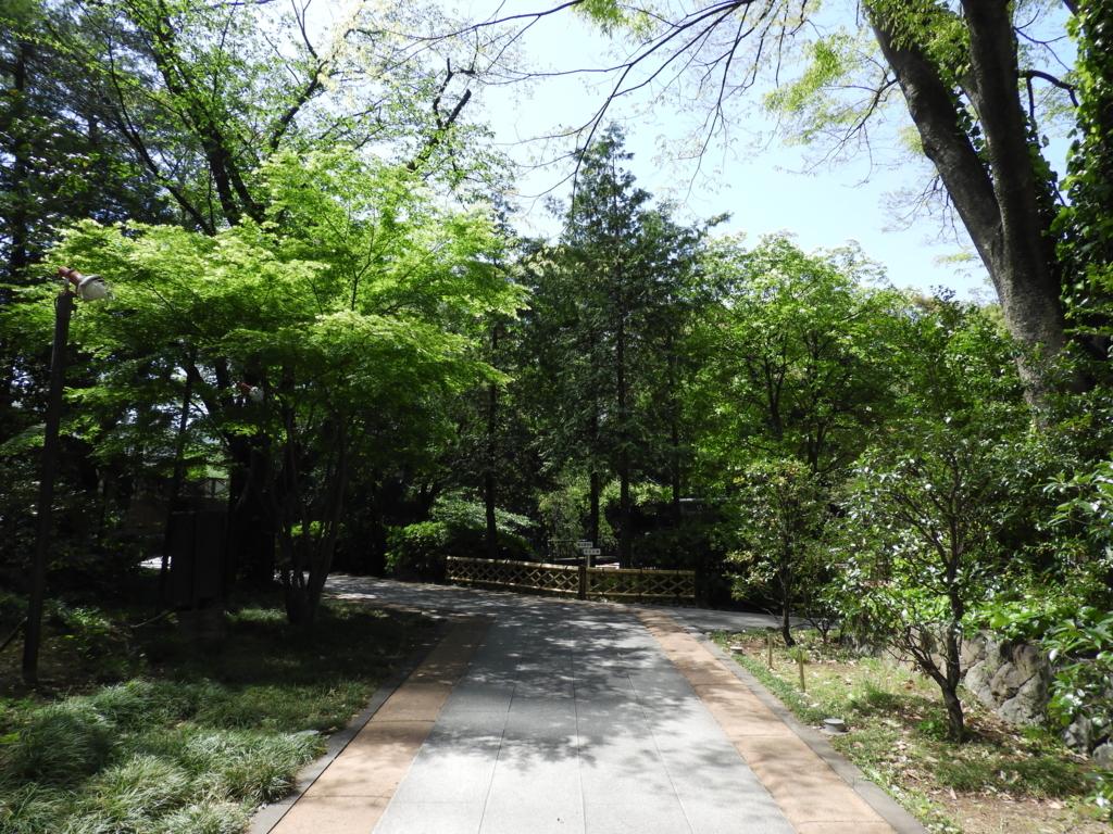 東郷神社の参道
