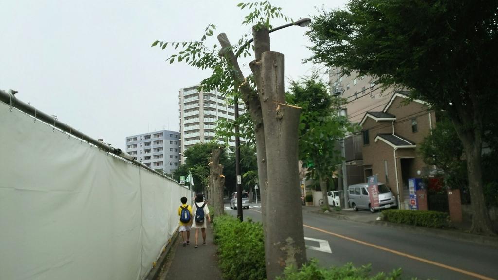 f:id:minamimachida0706:20170704174858j:plain