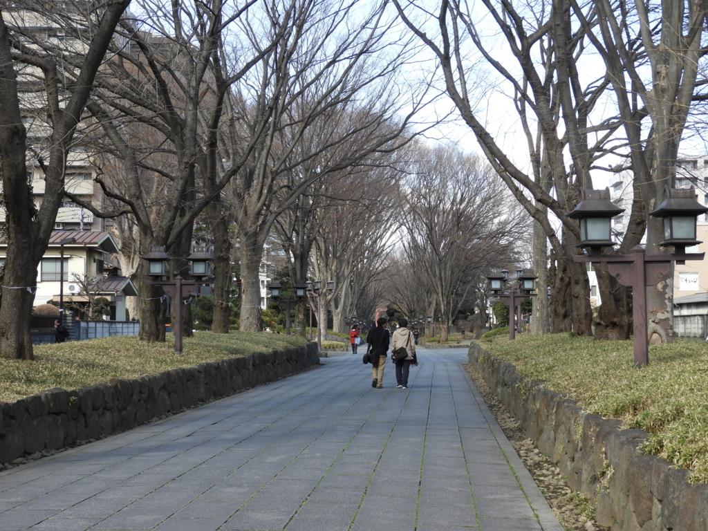 武蔵一宮氷川神社日本一の長さの参道