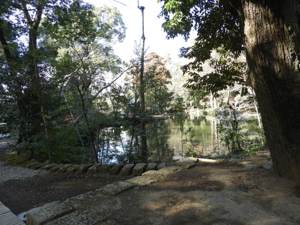 武蔵一宮氷川神社の神池