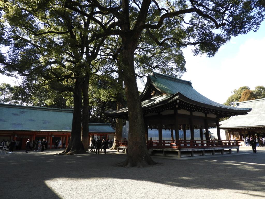 武蔵一宮氷川神社の境内の巨木