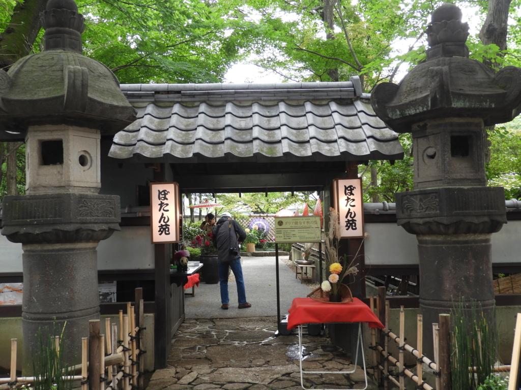 石灯籠の間から見えるぼたん苑の門。両脇に「ぼたん苑」と書かれた照明が掛けられ、門を抜けた先で男性が傘を開こうとしている。