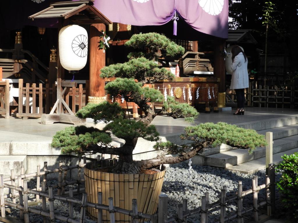 東京大神宮にお参りしている30歳前後の女性