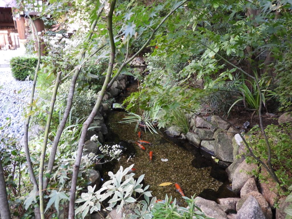 心身が浄化される東京大神宮の「せせらぎの池」
