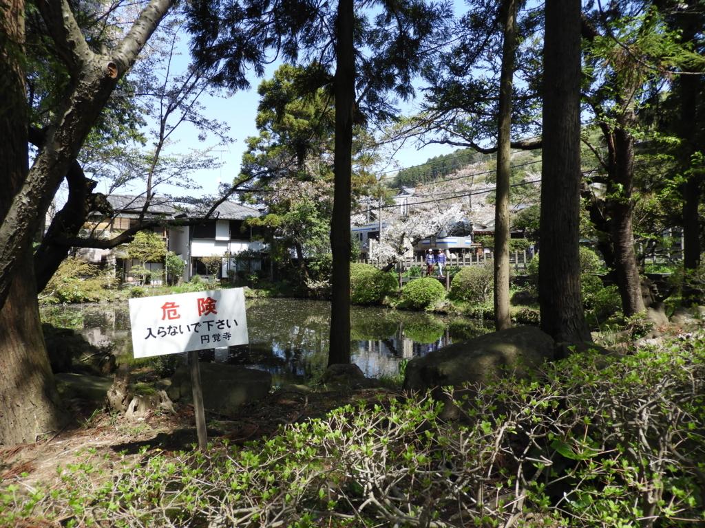 線路の向かい側にある円覚寺の白鷺池