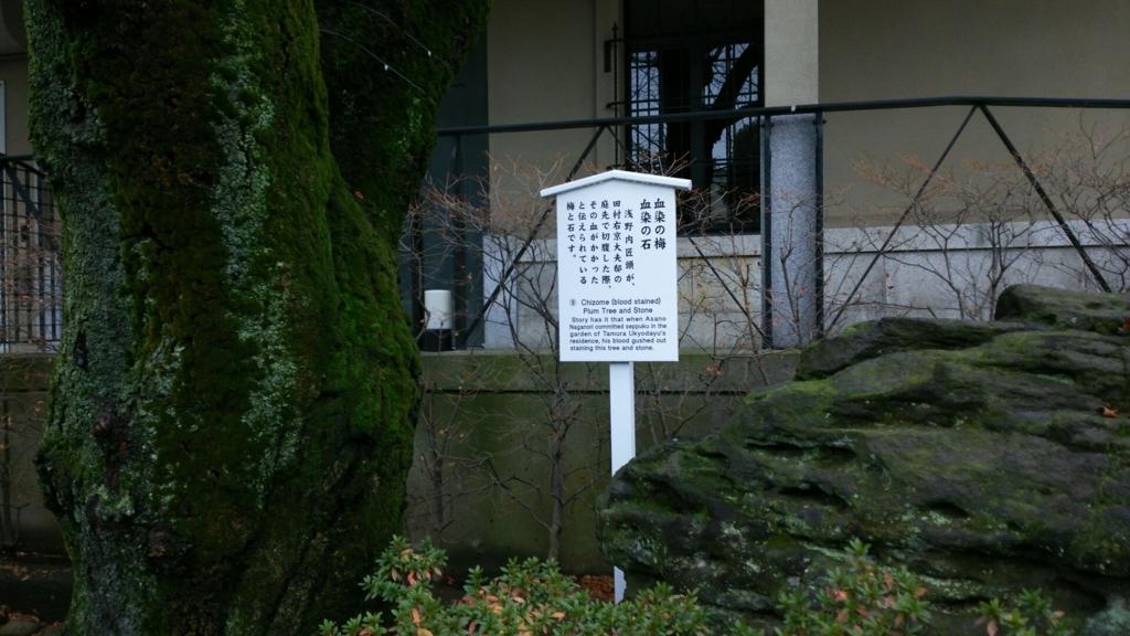 泉岳寺の血染めの梅・血染めの石