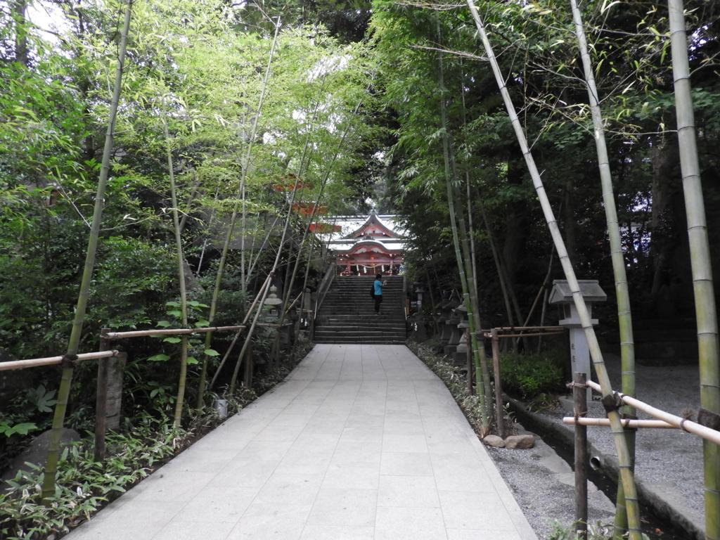 来宮神社の参道