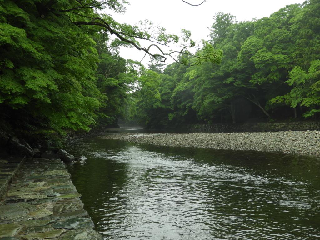うっそうとした森の間を流れる五十鈴川。