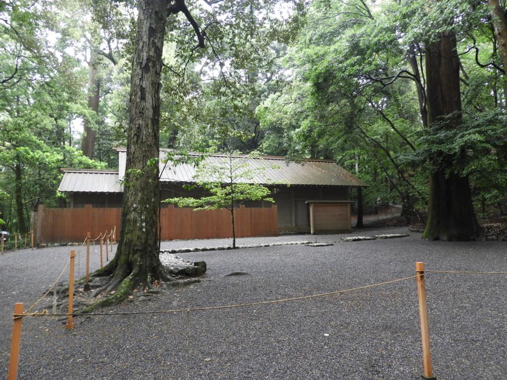 杉の巨木の奥に見える伊勢神宮内宮の忌火屋殿
