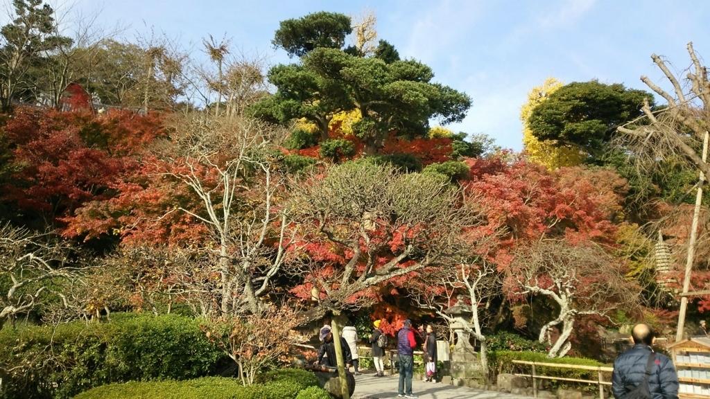 長谷寺の下境内庭園付近の紅葉