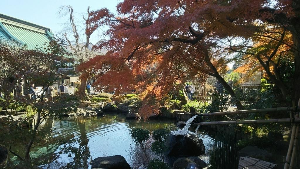 長谷寺の放生池
