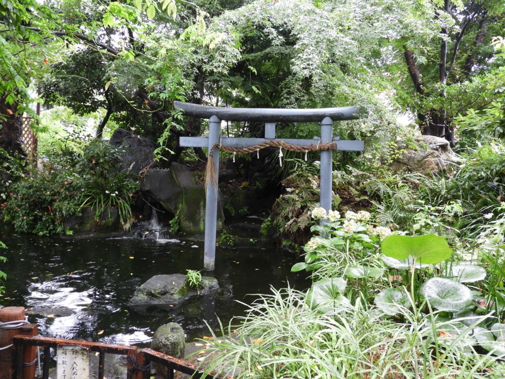 児盤水。愛宕神社境内の池の奥から水が湧き出ている。池の中央には鳥居があり、右側には水草が植えられている、