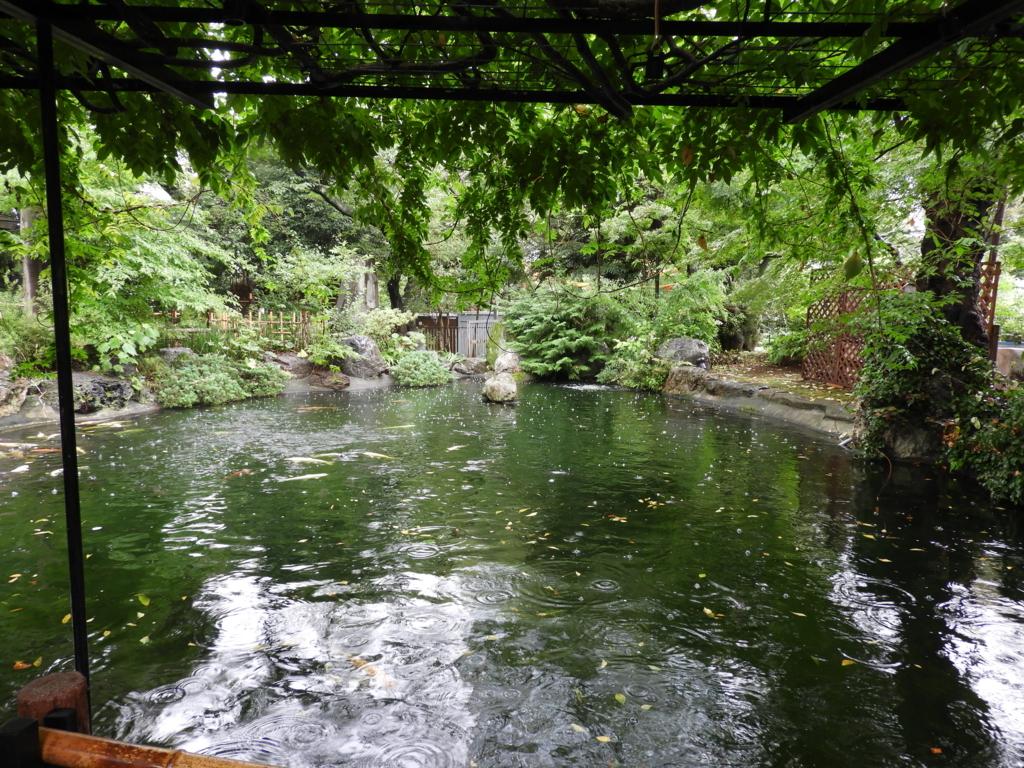 境内の池の全景