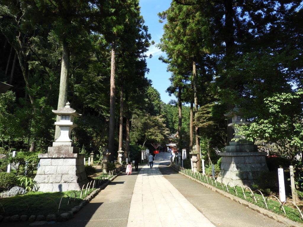 多くの著名人が植樹した高麗神社の参道