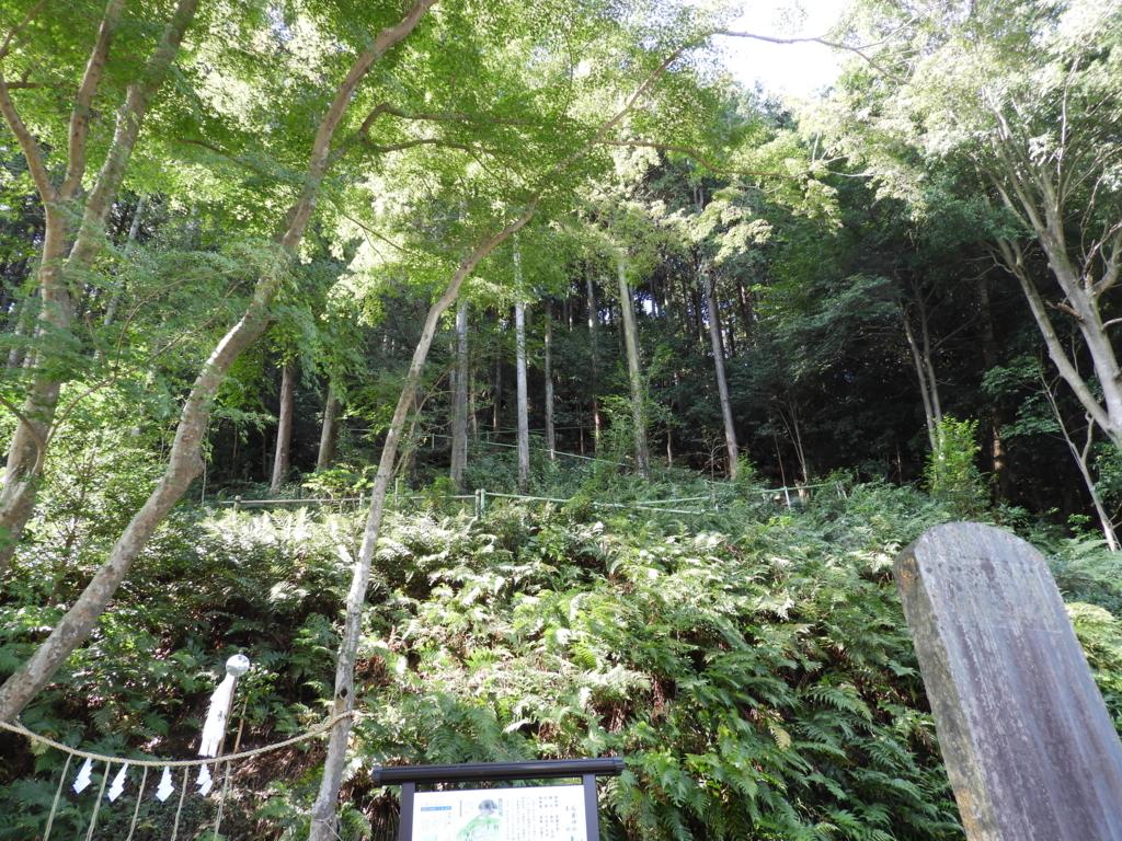 高麗神社末社の水天宮への山道